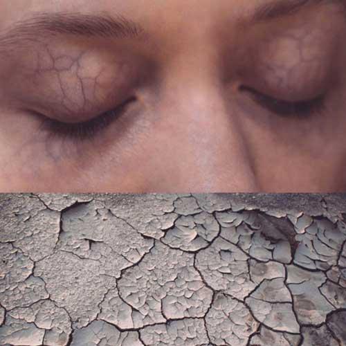 بشر در برابر طبیعت، اثر آگنشکا لِپکا