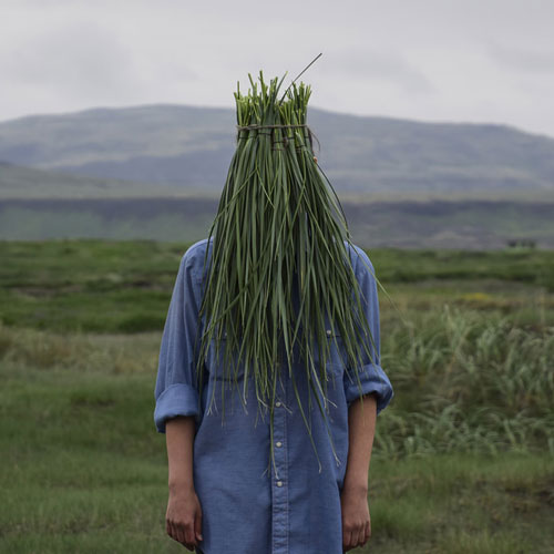 Landface by Anastasia Savinova Cover