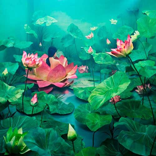 سلف پرترههای رویایی اثر جی یانگ لی