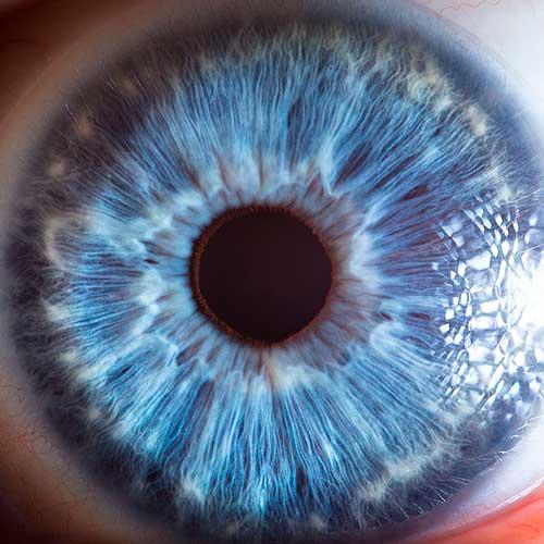 چشمها اثر سورن مانولین - Suren Manvelyan - کاور