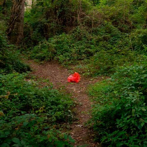 قرمز، تصویری از قرمزی رد انسان در محیطی که به آن تعلق ندارد! کاور